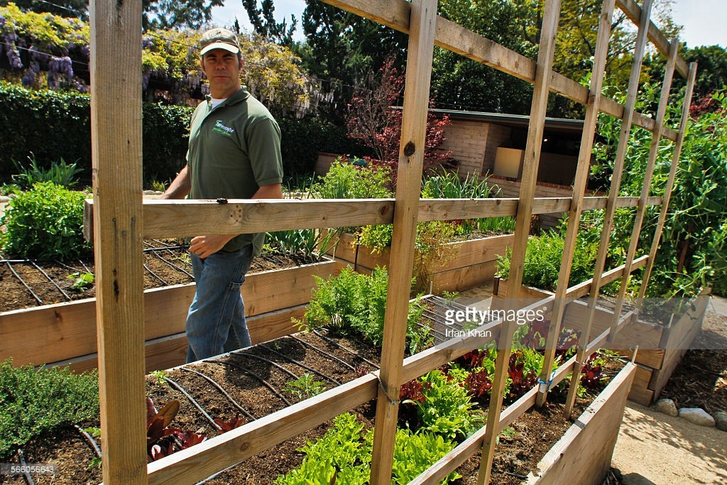 Todd Lininger (Cq), de Farmscape, parcourt une microferme (jardin comestible d'un particulier) dans l'arrière-cour de la maison à Claremont