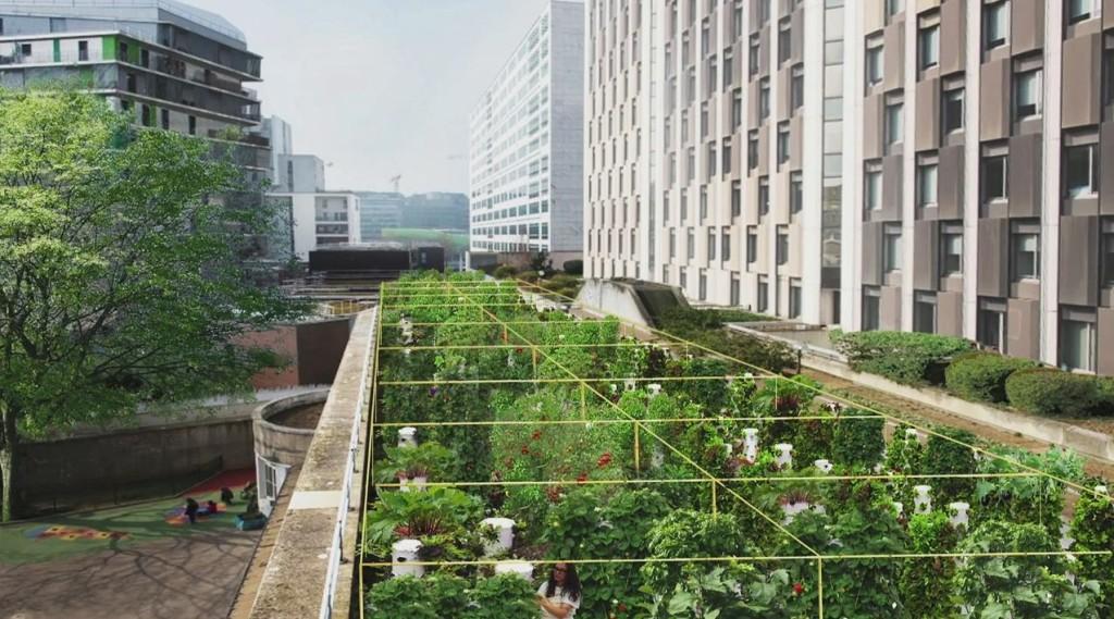 Jardin sur toits pourvus de colonnes de cultures pour un accès plus facile en complément de carrés de cultures surélevés