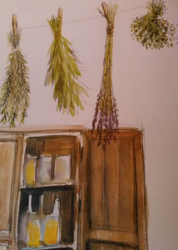"""Le séchage des plantes par bouquet. Illustration """"Kaizen©"""""""