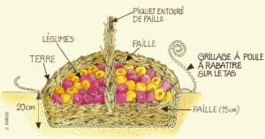 Un autre méthode de mise en silo avec de la paille au jardin. En empilant les légumes, on peut les recouvrir d'une petite couche de terre et mettre que des légumes sains dans le silo. © Centre terre vivante