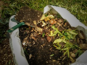 Article-compost-2020-2