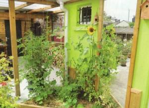 Joseph perfectionne les micro-climats dans son jardin avec la pose de ce miroir