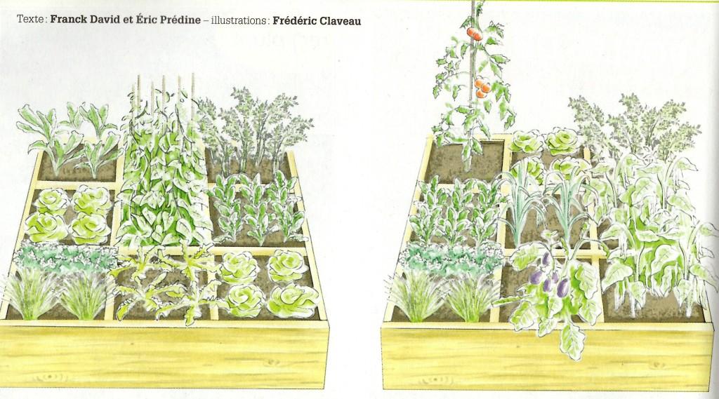 Un carré pour mars à gauche (gauche à droite et haut en bas) : navet, pois, carotte, laitue, pois, radis, persil et ciboulette, roquette, laitues; et le carré pour juin: tomate, laitue, carotte, radis, poireaux, haricots, persil et ciboulette, aubergines, haricots. ©Terre-vivante_HS.16