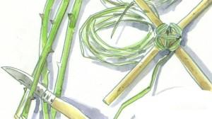 Les éclisses de Ronce, Illustration au jardin-centre terre-vivante